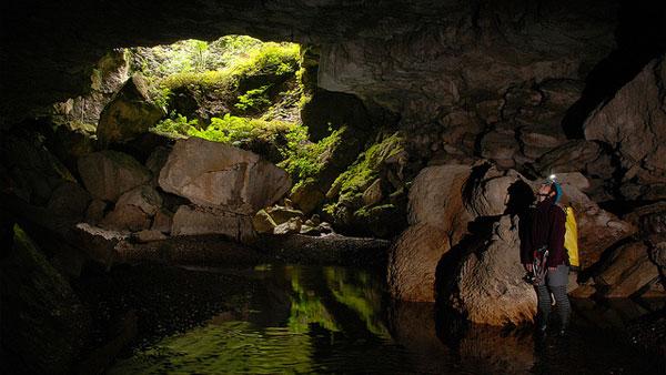 Waitomo Cave Entrance