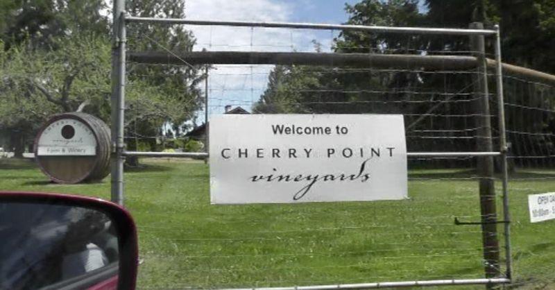 winery vineyard chemainus