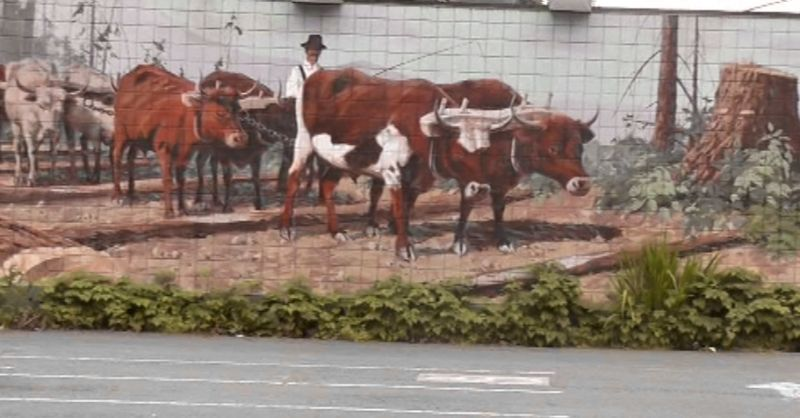 murals street art
